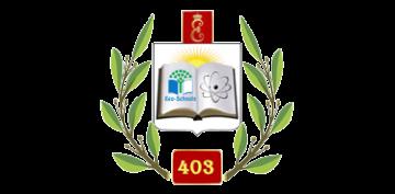 Государственное бюджетное общеобразовательное учреждение средняя общеобразовательная школа № 403 Пушкинского района Санкт-Петербурга